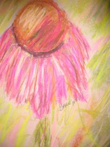pastelconeflower